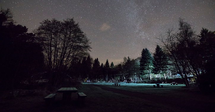 a starry night at Hamsterley Forest Dark Sky Discovery Site.