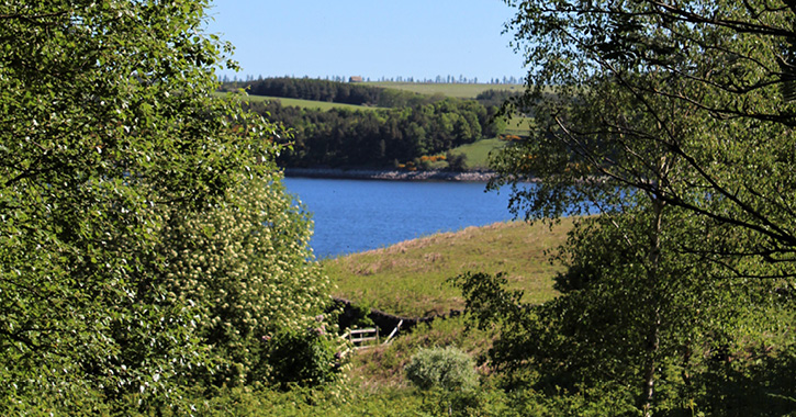 View from Pow Hill Countryside Park of Derwent Reservoir
