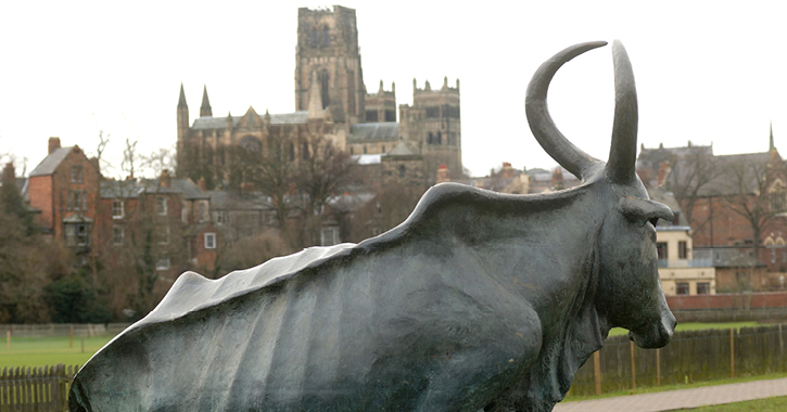 The Durham Cow sculpture on the riverbanks of Durham City
