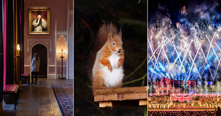 left to right - woman standing inside Auckland Castle, Red Squirrel and Kynren finale fireworks
