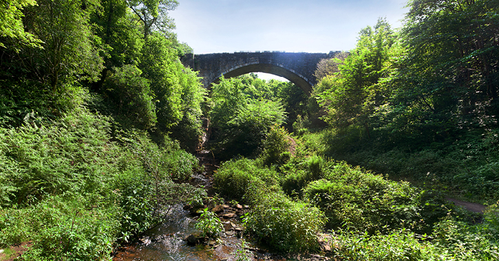 Causey Arch landscape and woodland