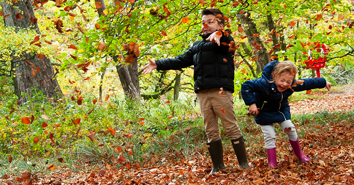 children playing in autumn leaves, county durham