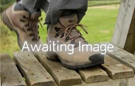 Image of walking boots