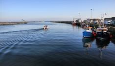 Amble Harbour & Marina