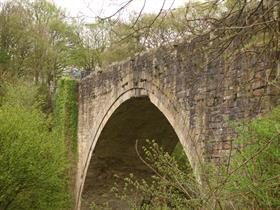 Causey Arch