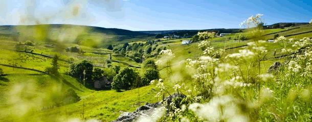 Explore the Durham Dales