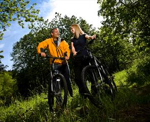 Durhams top 10 cycle routes - Hamsterley Forest