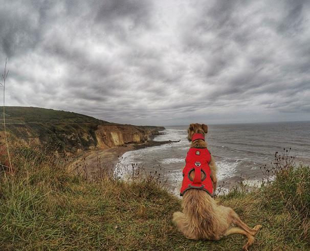 Walking along the Durham Heritage Coast