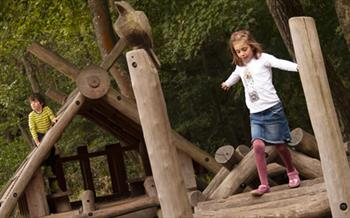 Hamsterley Forest Kids Playing
