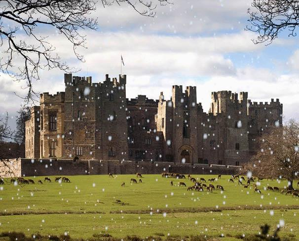 Raby Castle and deer park