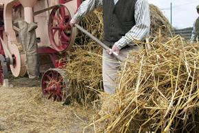 Great North Festival of Agriculture at Beamish Museum