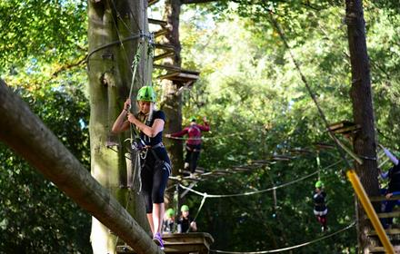 Beamish Wild Treetop Adventure