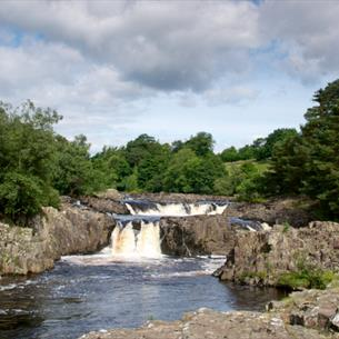 An art workshop for all abilities at Low Force