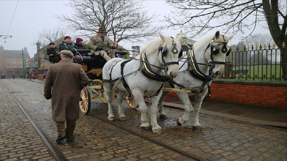 Beamish Museum: Horses at Work
