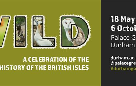 Wild: A Celebration of the Natural History of the British Isles