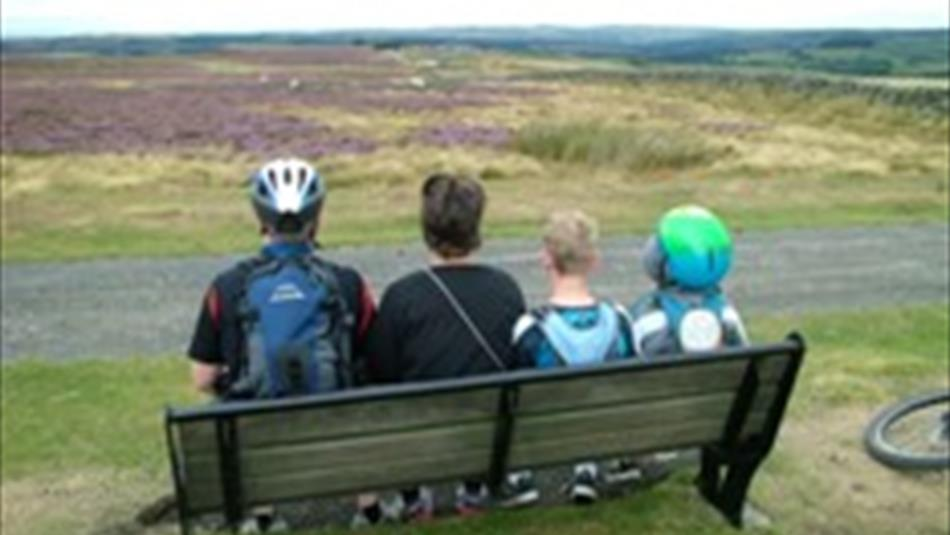 Viewpoint from Cycling on the Waskerley Way