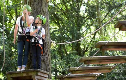 Kids Climbing in Durham Beamish Wild Treetop Adventure