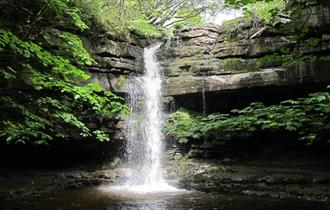 Waterfall at Gibson's Cave, situated nearby to Bowlees Visitor Centre