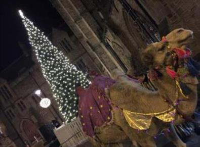 Durham City Nativity