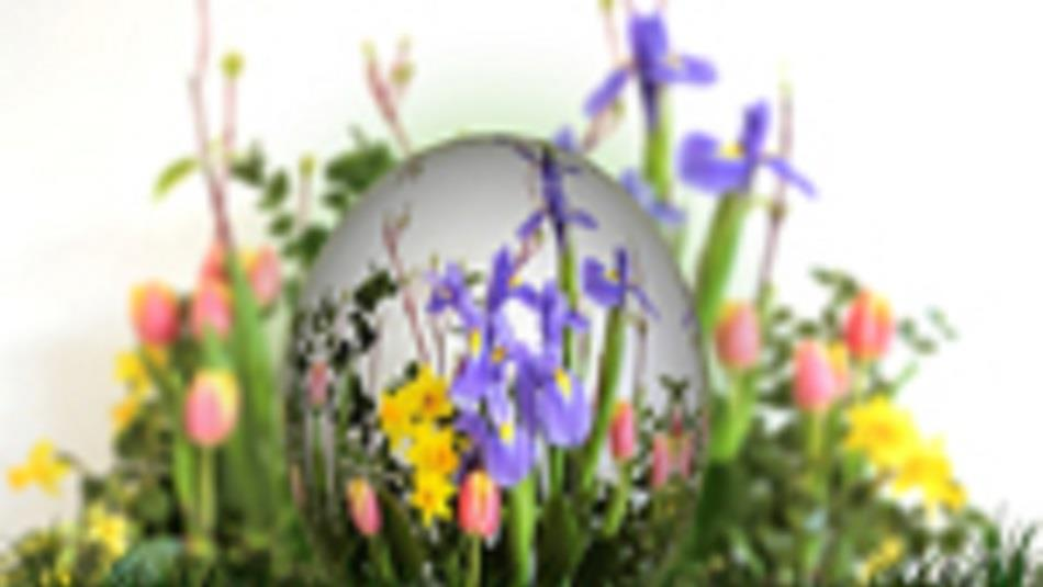 Bowes Museum: Easter Eggstravaganza