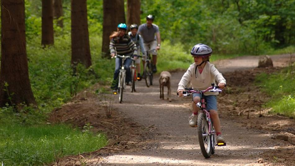 Cycling at Hamsterley Forest