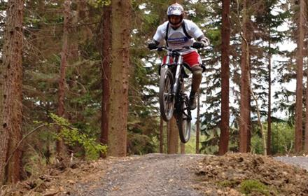 Hamsterley Forest - Black Cycle Trail