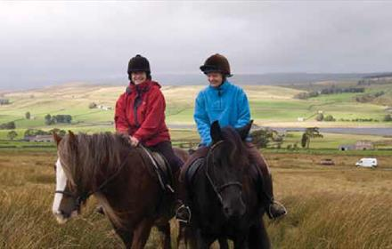 Horse Riding: Blanchland Packhorse Trail - Horse