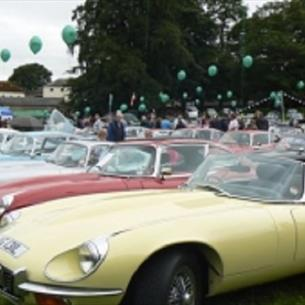 classic cars in the park