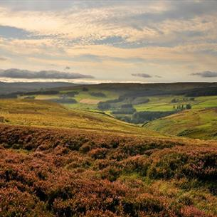 North Pennines Area of Outstanding Natural Beauty (AONB)