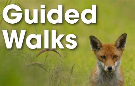 County Durham Guided Walks