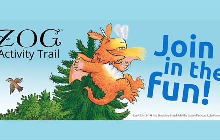 Zog Activity Trail at Hamsterley Forest
